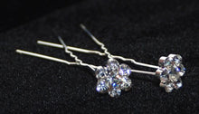Load image into Gallery viewer, Daisy Crystal Hair Pins - Pair