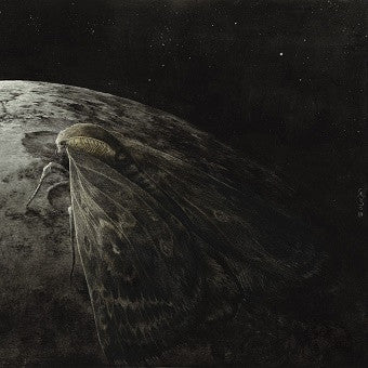Augrimmer -Moth and the Moon CD