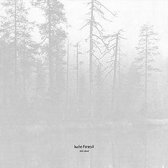 Hate Forest – The Curse LP
