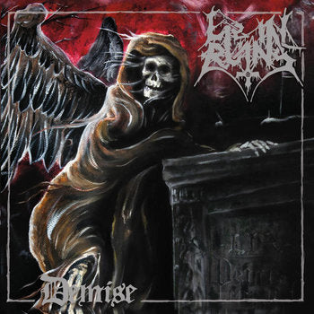 Lie in Ruins - Demise CD