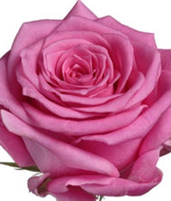 Load image into Gallery viewer, Simple Rose Tied Sheaf