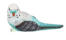 Load image into Gallery viewer, BUDGIES