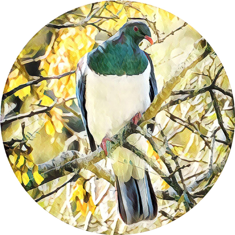 Kereru Print on Glass