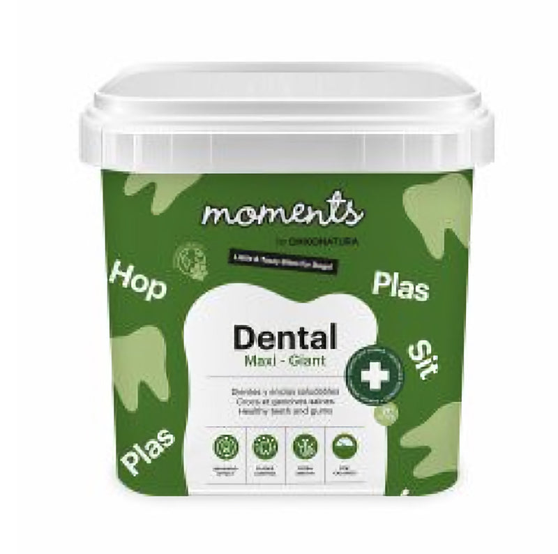 MOMENTS DENTAL - Maxi - Géant (500g)