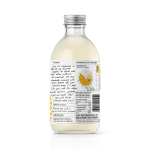 Ginger Kombucha | Case of 12 or 18