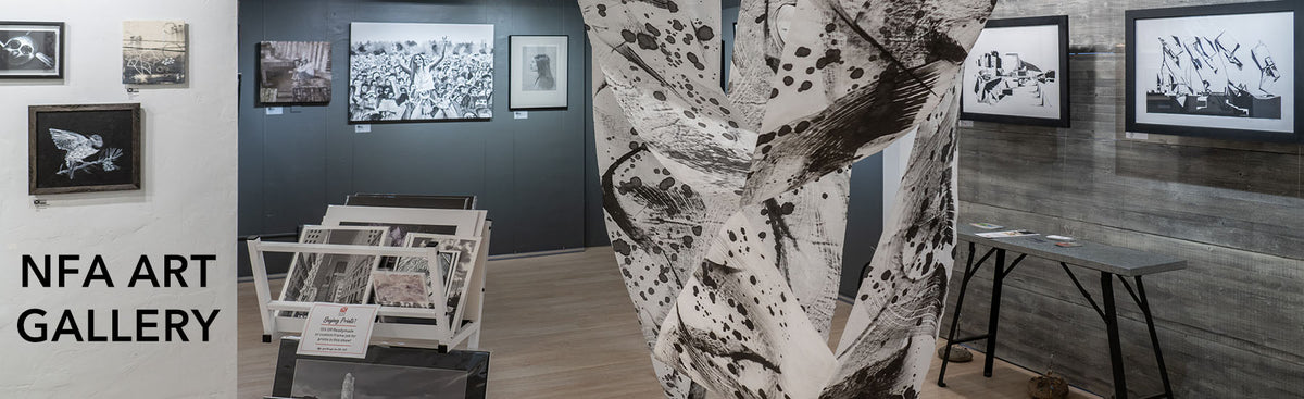 Banner image of Nevada Fine Arts' NFA Gallery interior with hanging art