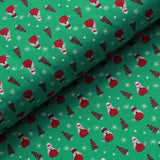 Christmas Robins, Winter Warmer Quilting Cotton Collection