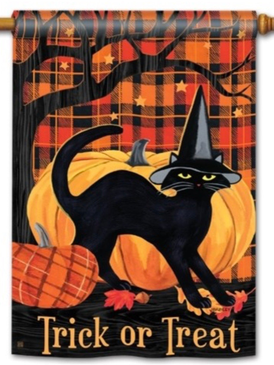 Witch Hat Cat Standard Flag (Flag Pole Sold Separately)