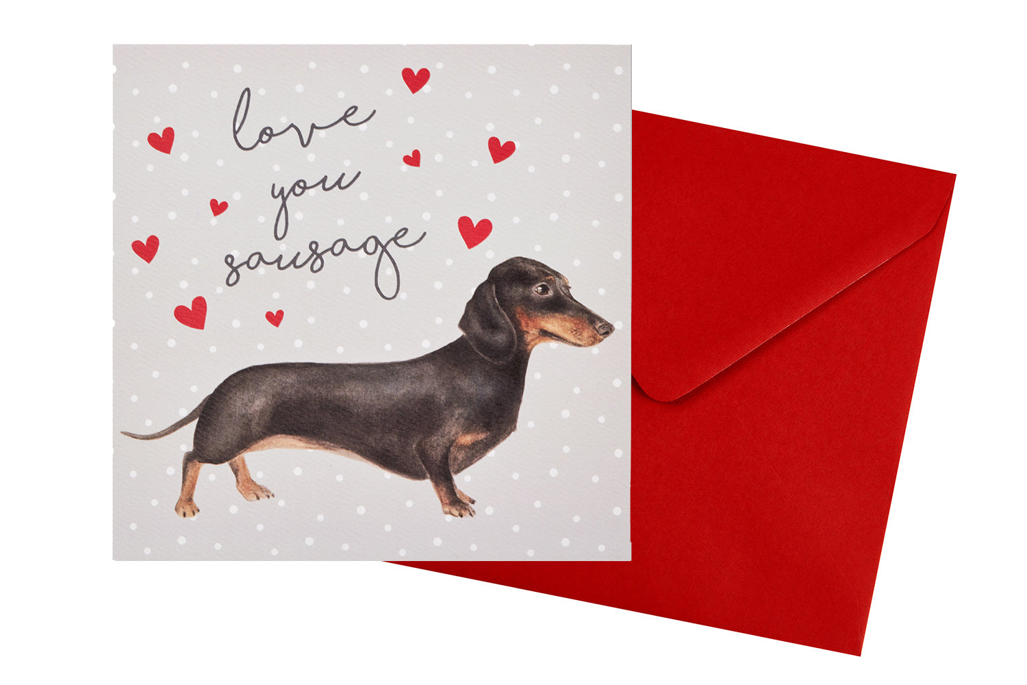 ***Price Includes Delivery***  Richard Lang Derby  Greeting card featuring an illustration with a cute little sausage dog and the text:  'Love you sausage'