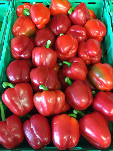 Red Capsicum/pepper- each