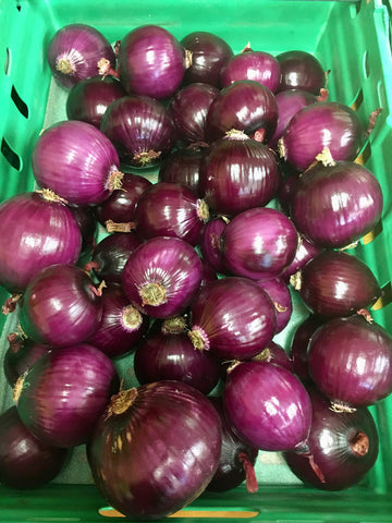 Peeled Red Onions $4.99/kilo