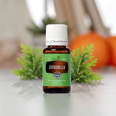 Citronella Essential Oil (Young Living Essential Oils)