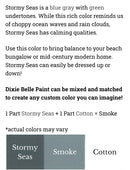 Stormy Seas  / Dixie Belle Chalk Mineral Paint