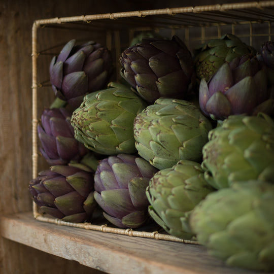 Basket of Green and Purple Artichokes