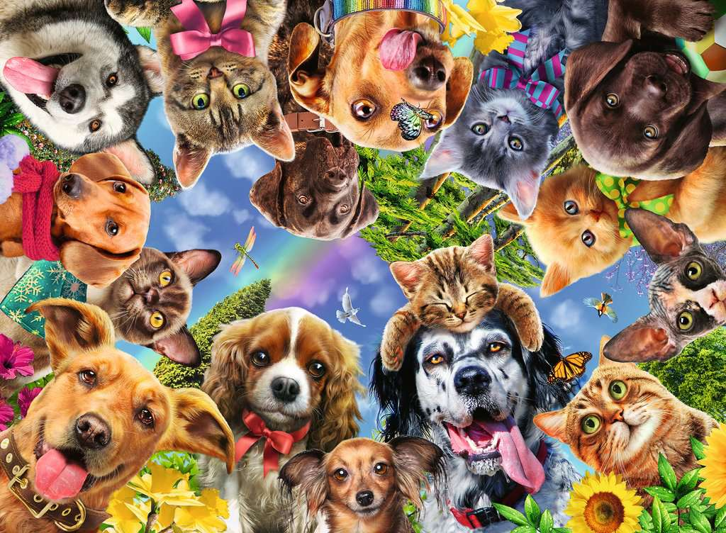 Funny Animal Selfie 500 Piece
