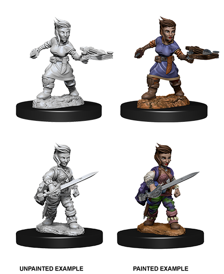 Pathfinder Female Halfling Rogue