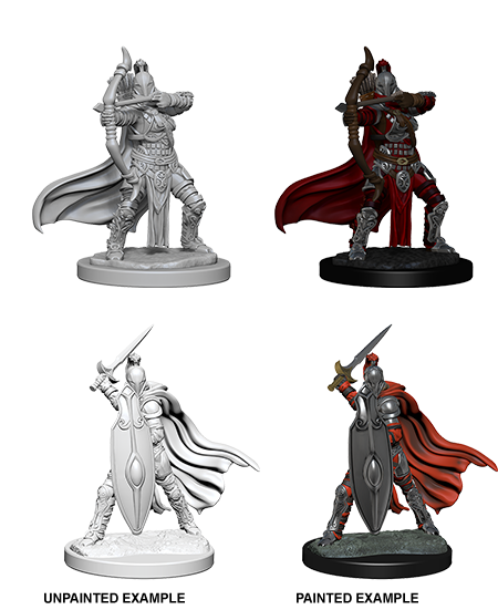 Pathfinder Female Knights/Gray Maidens