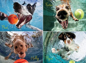 Underwater Dogs Play 1000 Piece