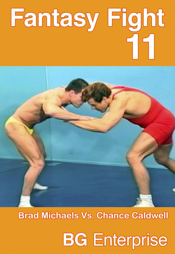 FANTASY FIGHT 11 DVD