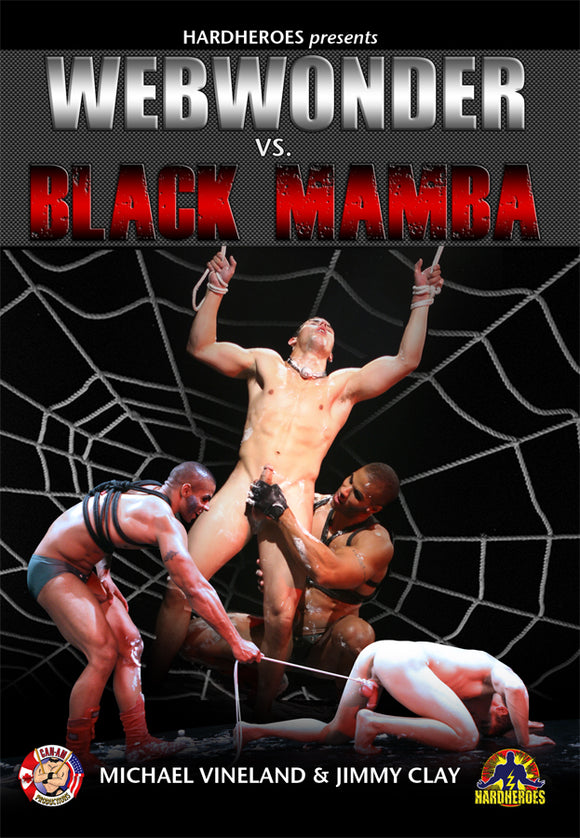 Webwonder Vs. Black Mamba