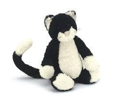 Bashful Black & White Cat