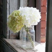 Hydrangea Bundle Cream/Green