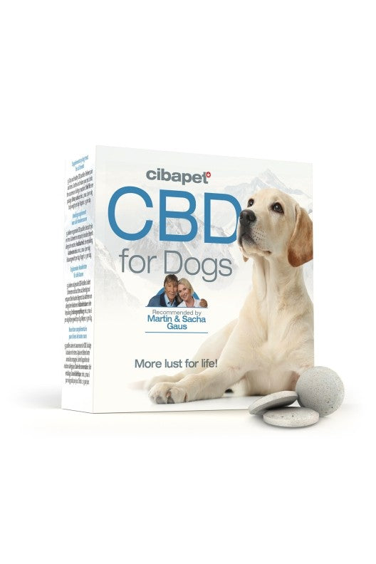 Cibapet CBD oil pastilles box with labrador dog
