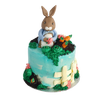 Peter Rabbit Cake | Birthday Cake