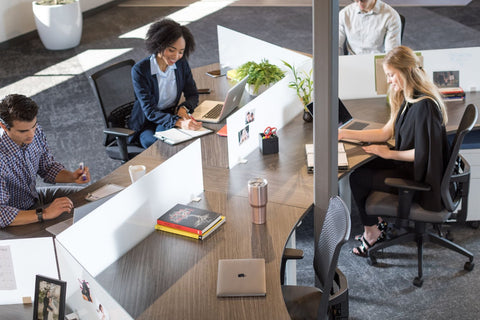 4 professionals enjoying their work at desks with frosted glass dividers
