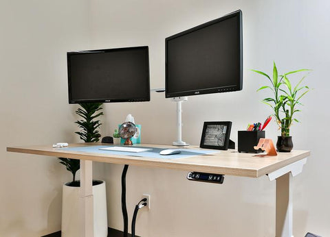 Dual monitors on an white oak height adjustable desk with white steel