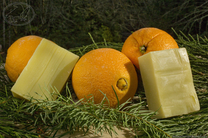 Citrus and Fir Needle Hempseed Oil Soap