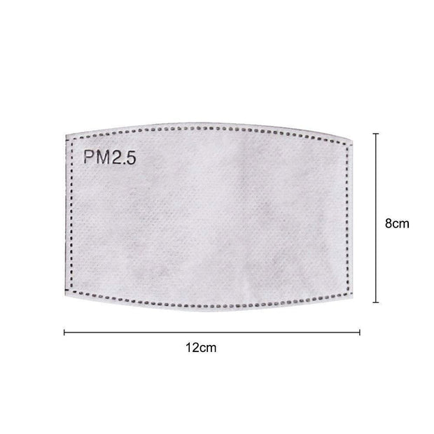 Fashion Mask PM2.5 Activated Carbon Filters