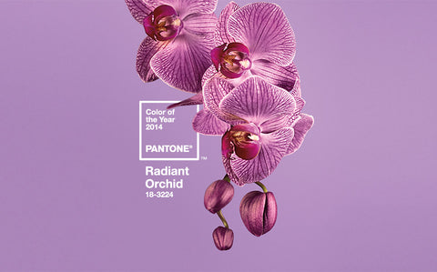radiant orchid - pantone color of 2014