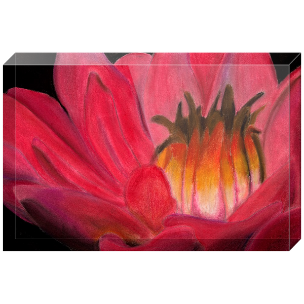 Red Waterlily Acrylic Block