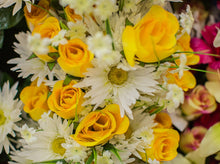 Load image into Gallery viewer, Daisy and Yellow Rose Bush