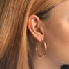 Rose Gold Polished Hoops