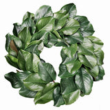 Green magnolia wreath, 17 inch on white background