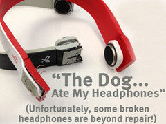 The Dog Ate My Headphones!