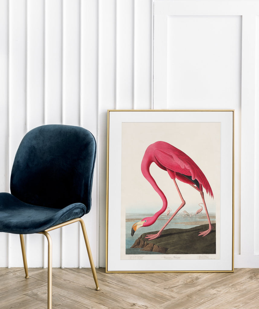 LINDSEY FOARD // Flamingo Print // Antiquarian Art
