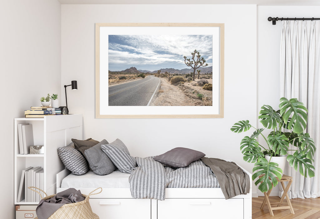 LINDSEY FOARD // Joshua Tree Landscape Photo