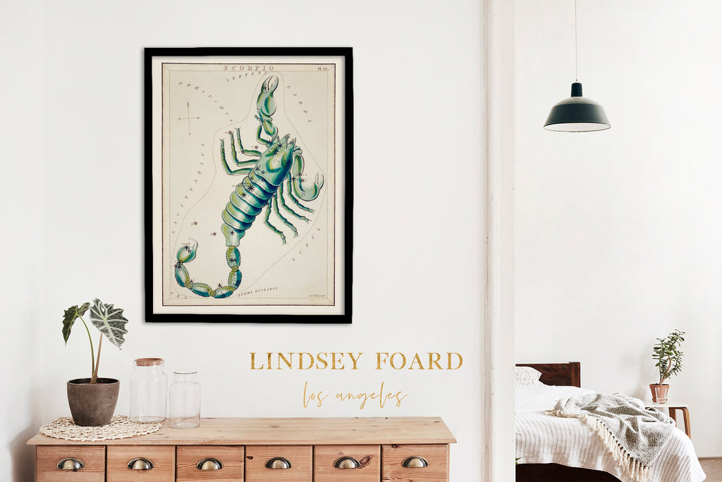 LINDSEY FOARD // Scorpio Star Map Print // Antiquarian Art