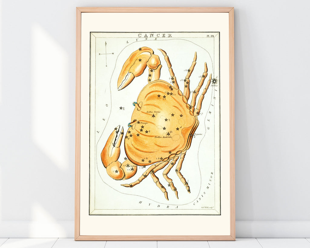 LINDSEY FOARD // Cancer Star Map Print // Antiquarian Art