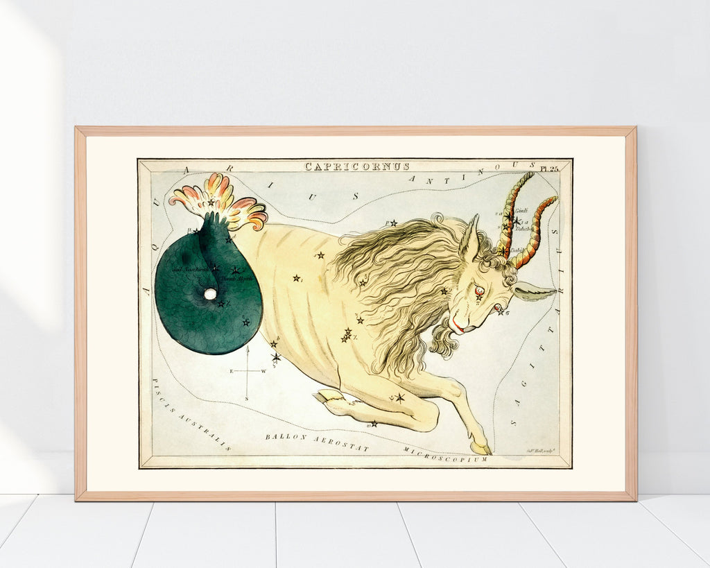 LINDSEY FOARD // Capricorn Star Map Print // Antiquarian Art
