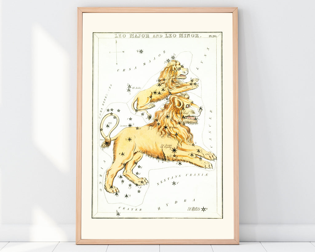 LINDSEY FOARD // Leo Star Map Print // Antiquarian Art