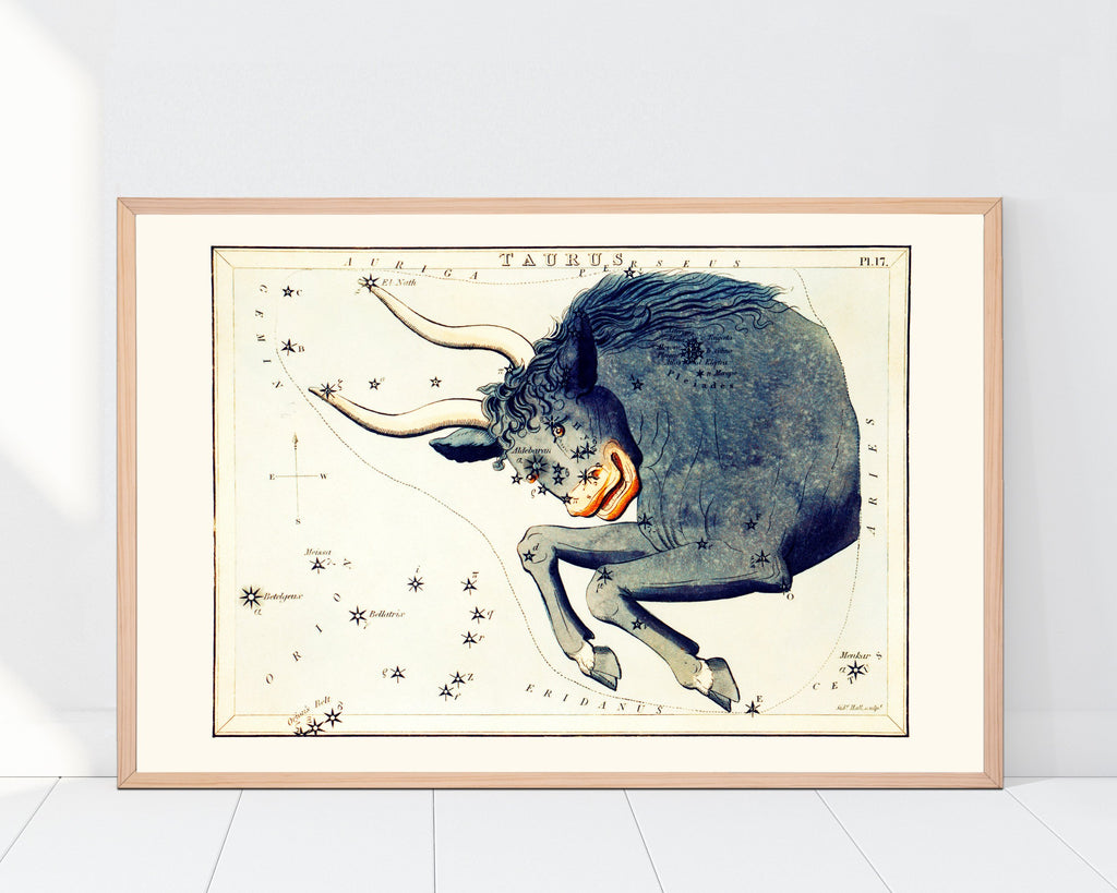 LINDSEY FOARD // Taurus Star Map Print // Antiquarian Art