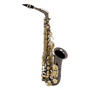 Selmer La Voix II Alto Saxophone Outfit Black Nickel / Laquer/ Silver Plated