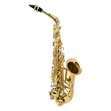 Load image into Gallery viewer, Selmer La Voix II Alto Saxophone Outfit Black Nickel / Laquer/ Silver Plated