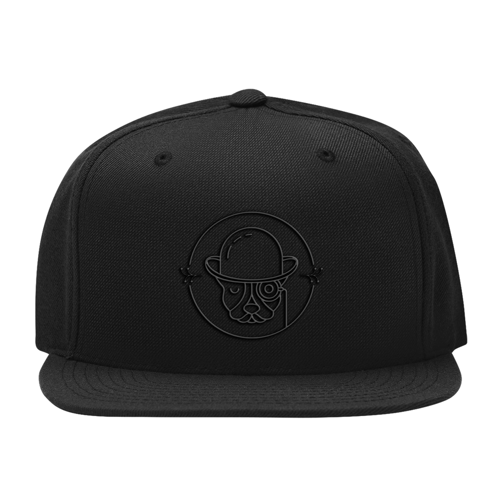 Citizen Snapback