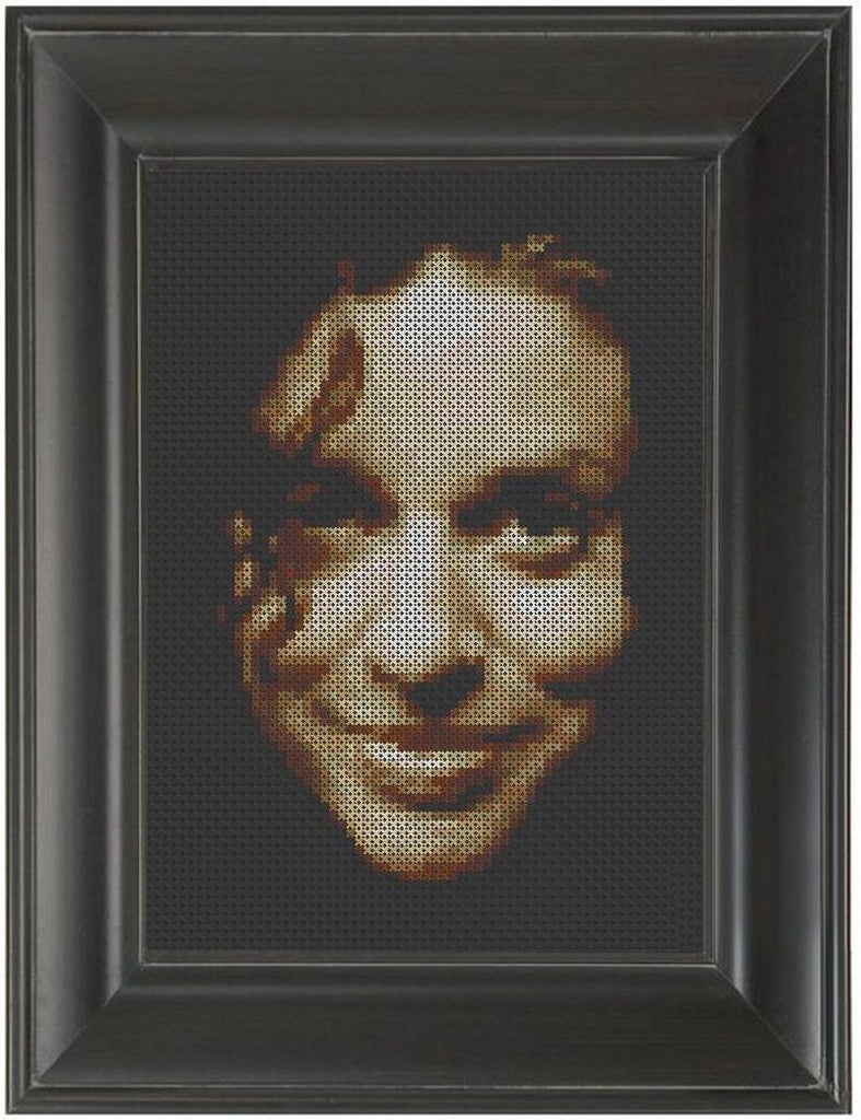 Ani Difranco - Cross Stitch Pattern Chart
