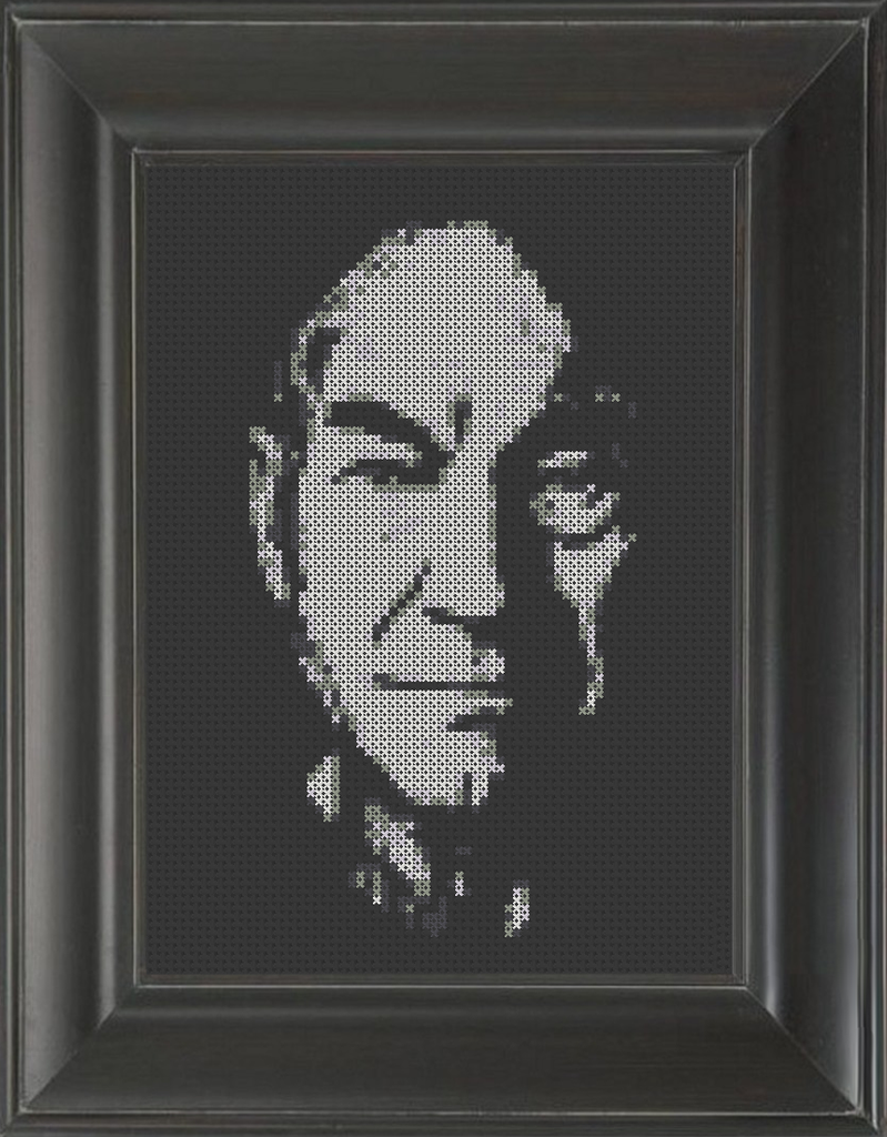 Patrick Stewart - Cross Stitch Pattern Chart